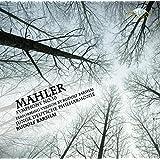 Mahler - Symphony No.10 ver.Barshai