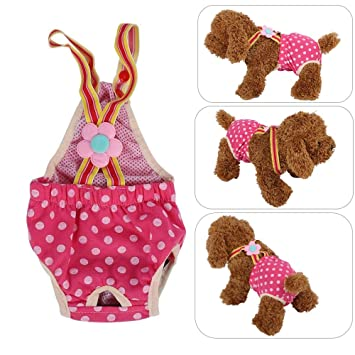 Smandy Pantalón Sanitario para Perros, 6 tamaños Perro Hembra ...