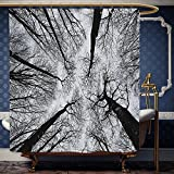 dark grey curtains john lewis Wanranhome Custom-made shower curtain Forest Scary Winter Tops of the Trees Dark Dramatic Silhouettes Enchanted Image Black Grey For Bathroom Decoration 54 x 78 inches