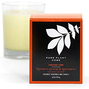 Pure Plant Home Mandarin/Orange Lemongrass Stockholm Coconut Wax Glass Candle, 6 oz.