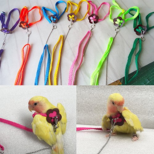 GMSP Adjustable Parrot Bird Leash Outdoor Harness Training Rope Anti Bite Flying Band. ()