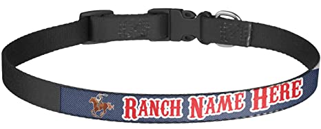 Amazon com : Western Ranch Dog Collar - Large (Personalized