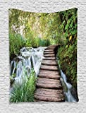 House Decor Tapestry By Ambesonne, Wooden Footbridge Along The Stream In Greenery Jungle Waterscape Scenery, Bedroom Living Room Dorm Decor, 40Wx60L Inches