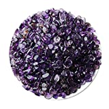 iSTONE Jewelry Grade A+ Natural Gemstone Tumbled Chips Stone Crushed Crystal Quartz Pieces Irregular Shaped Stones 1 pound(about 460 gram) (Amethyst(size 0.1~0.2''))