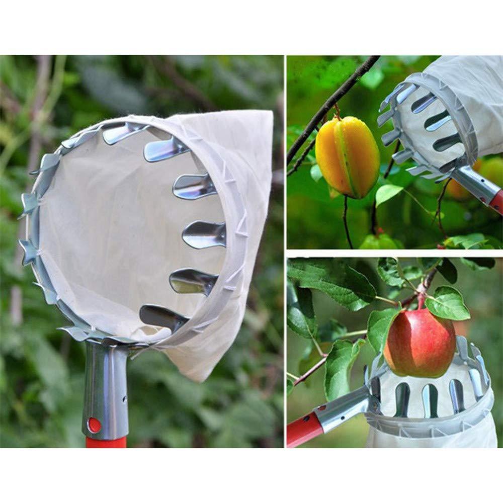 Panier /à Fruits Panier /à Fruits Poire p/êche Outil de Jardinage KEISL Pince /à Fruits Portable 16 cm Attrape-Fruits Pomme
