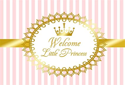 Amazon.com : CSFOTO 5x3ft Background for Welcome Little Princess ...