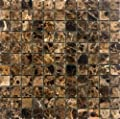 Epoch Tile ED1X1 1x1 Emperador Dark Polished Marble