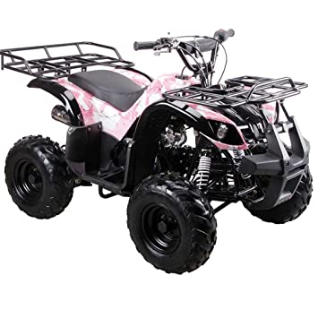 Amazon tao tao brand new for 90 assembled model ata 110d tao tao brand new for 90 assembled model ata 110d fully automatic 110cc utility atv sciox Choice Image