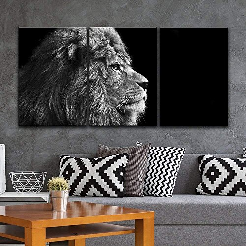 3 Panel Lion Head on Black Background x 3 Panels