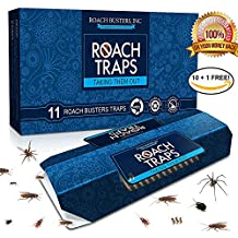 (11 Pack) Cockroach Traps Premium Non-Toxic Eco-Friendly -Spiders & Ants -Roach Busters (10 Traps + 1 Free) Bait Included Glue Chemical Free