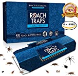 by Roach Busters (26)  Buy new: CDN$ 23.95CDN$ 18.95