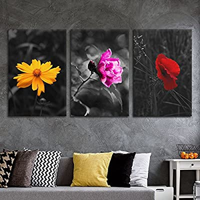 Quality Creation, Unbelievable Technique, 3 Panel Touch of Color Flowers on Black and White Background x 3 Panels