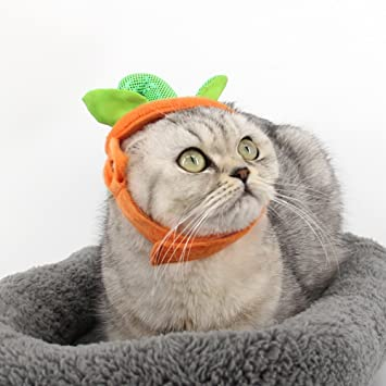 Yimosecoxiang - Disfraz de Halloween, Accesorios para niños y Adultos, Ideal para Fiestas de