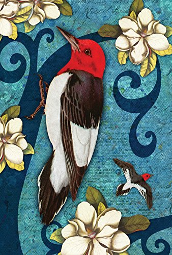 Toland Home Garden Red Headed Wood Pecker