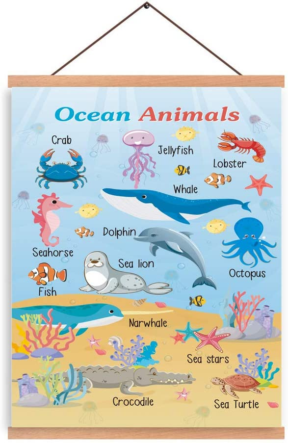 CHDITB Ocean Animals Art Print Magnetic Natural Wood Hanger Frame Poster, Marine Creature Canvas Painting 28X45cm Typology Whale Dolphin Seahorse Sea Lion Fish Colorful Wall Hanging Printing For Kids Room Classroom Decor