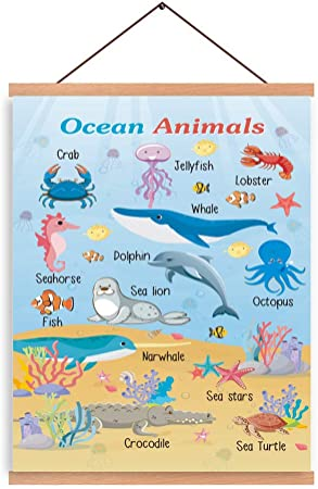 Chditb Ocean Animals Art Print Magnetic Natural Wood Hanger Frame Poster Marine Creature Canvas Painting 28x45cm Typology Whale Dolphin Seahorse Sea Lion Fish Wall Hanging Printing For Kids Room Decor Posters