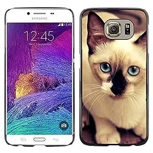 TopCaseStore / la caja del caucho duro de la cubierta de protección de la piel - Siamese Thai Cat Balinese Blue Eyes - Samsung Galaxy S6 SM-G920