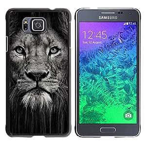 FlareStar Colour Printing Lion Powerful Nature Animal Big Cat cáscara Funda Case Caso de plástico para Samsung GALAXY ALPHA G850