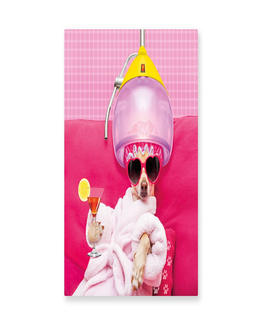 Lunarable Funny Wall Art, Chihuahua Dog Relaxing and Lying in Wellness Spa Fashion Puppy Comic Print, Gloss Aluminium Modern Metal Artwork for Wall Decor, 11.6 W X 23.5 L Inches, Magenta Baby Pink