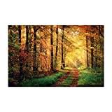 Fantasy Star Aquarium Background Sunshine Autumn Forest Path Easy to Apply and Remove Fish Tank Wallpaper Sticker Background Decoration 35.4''x19.6''