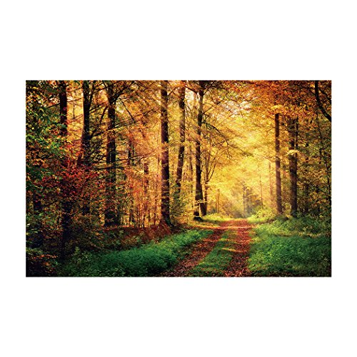 Fantasy Star Aquarium Background Sunshine Autumn Forest Path Easy to Apply and Remove Fish Tank Wallpaper Sticker Background Decoration 35.4''x19.6'' by Fantasy Star