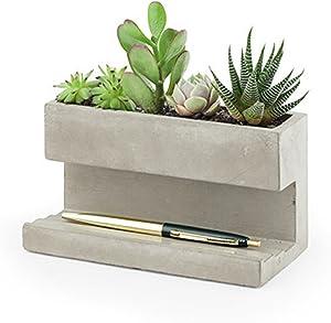 Kikkerland Concrete Desktop Planter, Large (PL02-L)