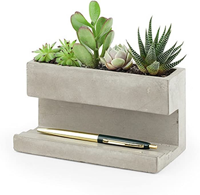 The Best Kikkerland Concrete Desktop Planter