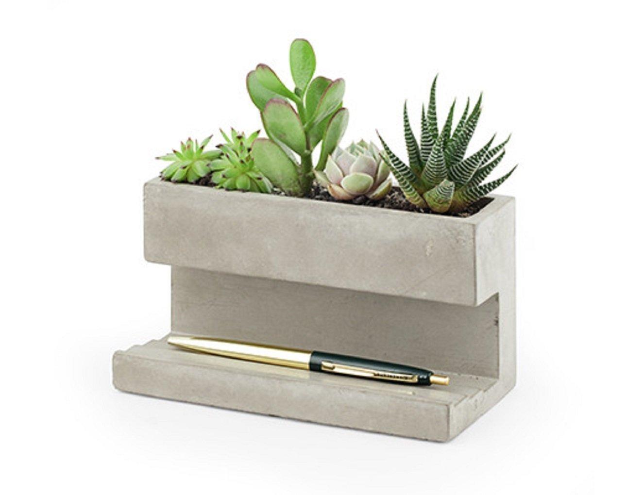 Kikkerland Concrete Desktop Planter, Large (PL02-L) by Kikkerland