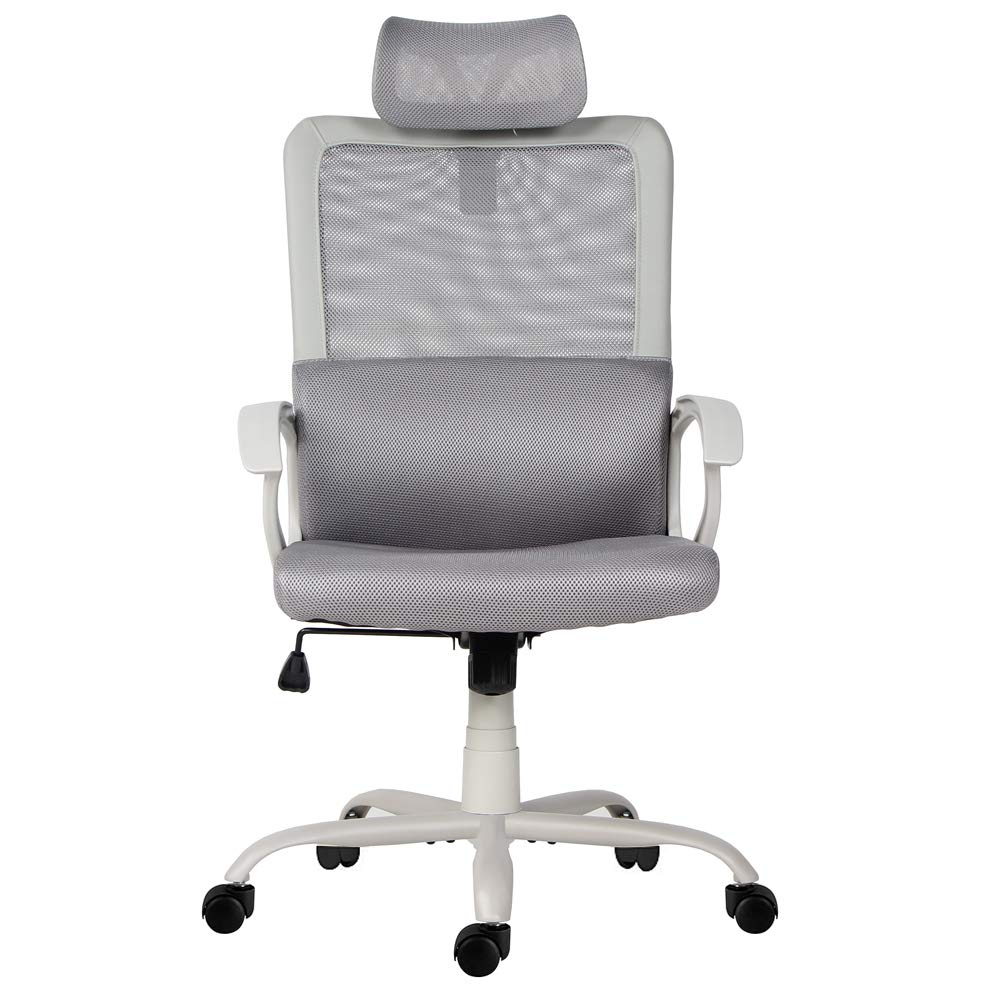 Sumgdesk Office Chair, Mesh Office Chair, Ergonomic Office Desk Chair Computer Task Chair with Adjustable Headrest