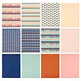 12 Pack Pocket Folders - Letter Size File Folders School and Home - 9.25 x 12 Inches