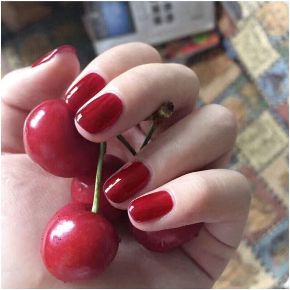 Amazon.com: 24 uñas postizas de 12 tamaños diferentes de ...