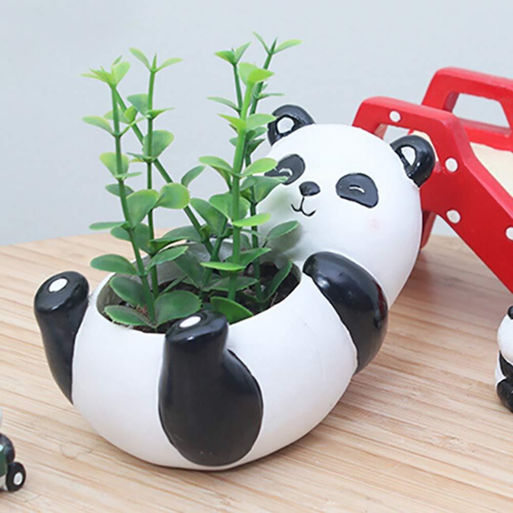Clyline Cartoon Animal Pot De Fleurs Charnu Pot De Fleurs D/écoration Paysage en Pot