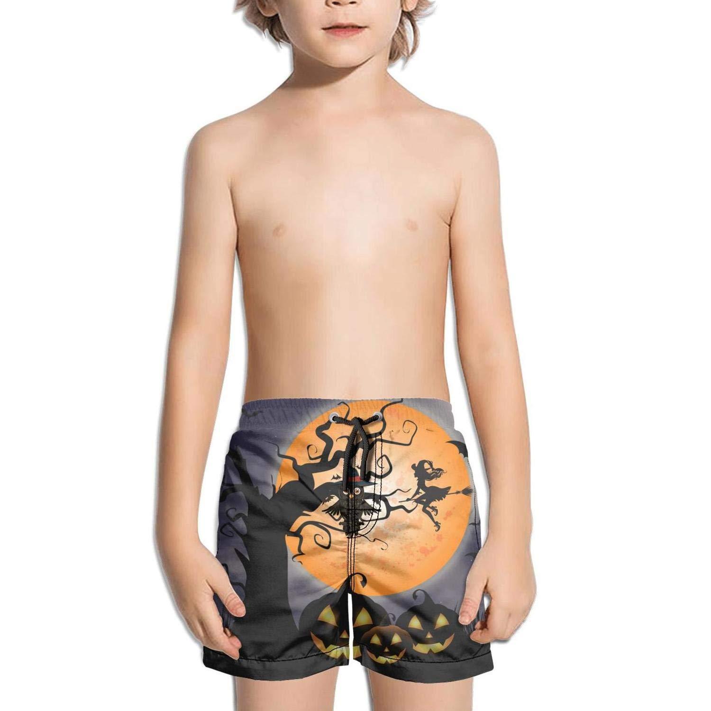 Boys Swim Trunks Summer Cool Quick-Drying Beach Pant Winter Bird Birdhouse Snowflake Surf Beach Board Shorts