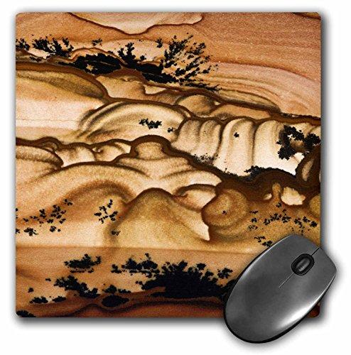 (3dRose USA, Oregon, Biggs Picture Jasper stone - US38 BJA0728 - Mouse Pad, 8 by 8 inches (mp_93704_1))