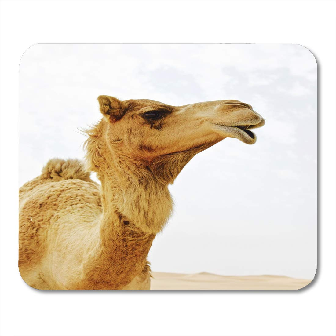 Boszina Mouse Pads Arabian Looking Up At Wild Dromedary Lyn Camel In The Desert With Light Blue White And Hint Of Sand Dunes Sky Pad For