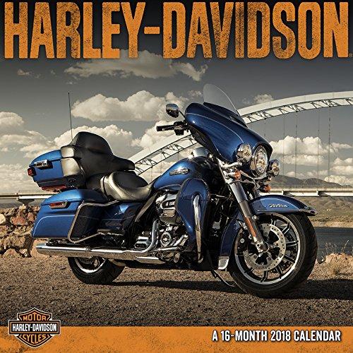 Harley Davidson 2018 Mini Wall - Models Famous 2017