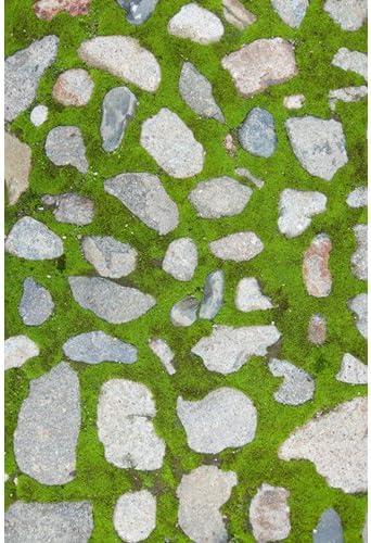 Fotografía envejecido sintética piedra del jardín patio suelo Drop fondo alfombrilla Felpudo de goma cf741, 4