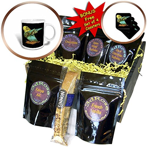 3dRose Sven Herkenrath Animal - Drawing of a Cute Budgie on a Branch Black Background - Coffee Gift Baskets - Coffee Gift Basket (cgb_281701_1)