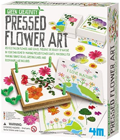 4M Green Creativity Pressed Flower Art Kit – Arts & Crafts DIY Recycle Floral Press Gift for Kids & Teens, Girls & Boys, Multi