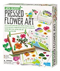 4M Green Creativity Pressed Flower Art K...