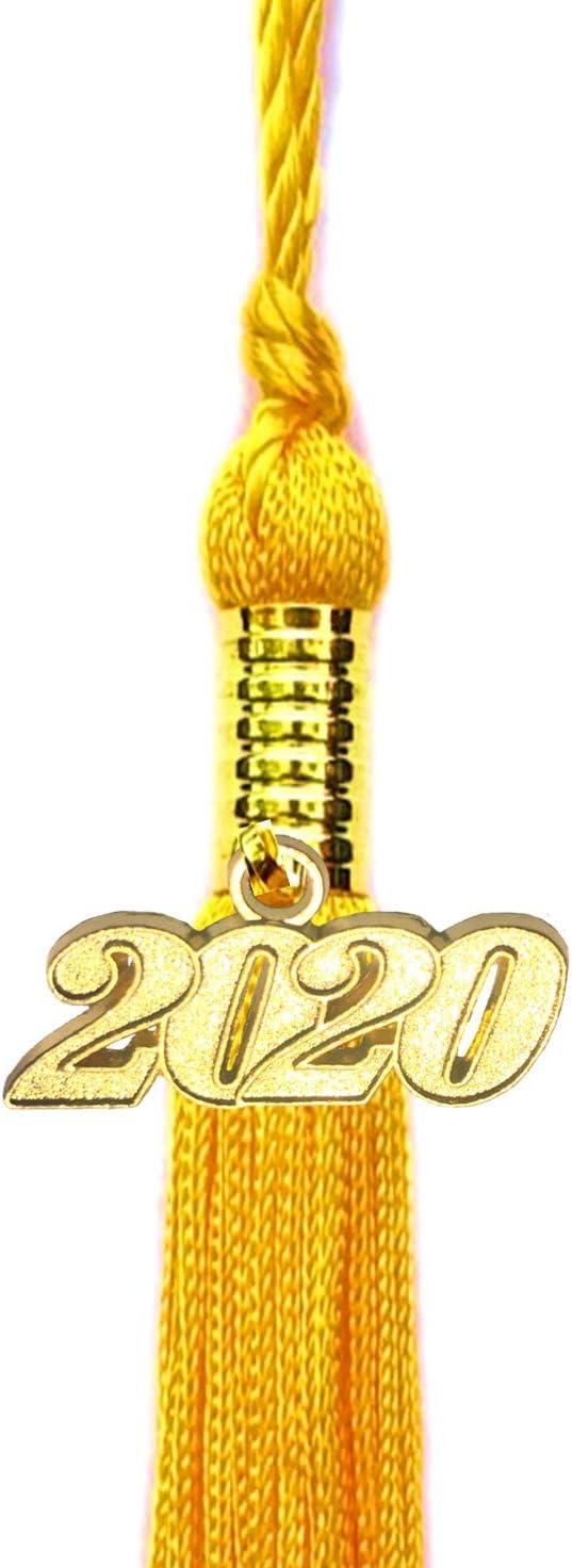 Double Color Tassel BKpearl 10 Pieces Graduation Tassel 2020 Tassels Graduation Cap Tassel Grad Tassels Graduation Decorations