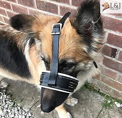 Bozal de piel para perro – seguro para pastor alemán y otros ...