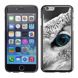 TECHCASE**Cubierta de la caja de protección la piel dura para el ** Apple iPhone 6 ** Owl Smart Bird Feather Eye Looking