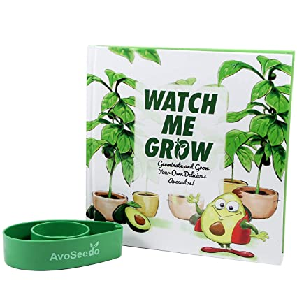 Amazon Avoseedo Avocado Plant Kit Kids Grow Your Own Avocado