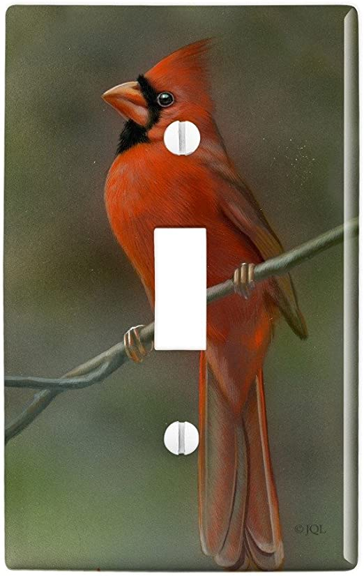 Amazon Com Graphics More Red Cardinal Bird On Branch Plastic Wall Decor Toggle Light Switch Plate Cover Furniture Decor