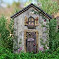 Miniature Dollhouse FAIRY GARDEN ~ Ladybug Fairy Door