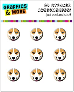 Graphics and More Blue Merle Tri Cardigan Welsh Corgi Face - Dog Pet Home Button Stickers Fits Apple iPhone 4/4S/5/5C/5S, iPad, iPod Touch - Non-Retail Packaging - Clear