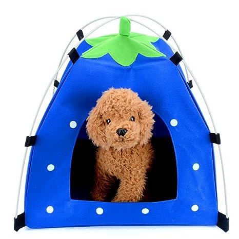 Zunea - Tienda de campaña para mascotas con forma de fresa, pequeña gato, cachorro