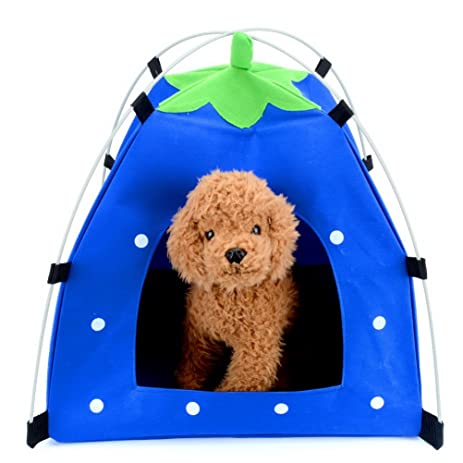 Pet Tent Strawberry Shape Small Cat Puppy Pop Up Portable Foldable Waterproof Windproof Sun Shade Cushion  sc 1 st  Amazon.com & Amazon.com : Pet Tent Strawberry Shape Small Cat Puppy Pop Up ...