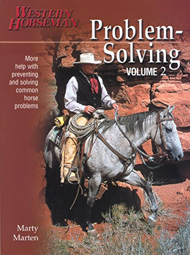 Problem-Solving: MOR: v. 2 por Marty Marten